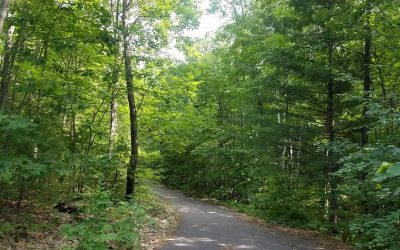 Fire Hill: Local Developer Collaborates with Landmark Conservancy and Bayfield County