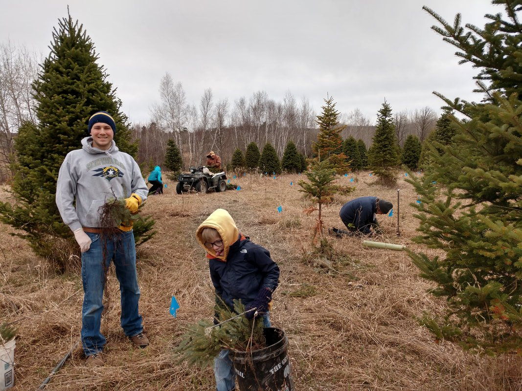 Three generations of the Henningsen family plant pines on their now conserved property.