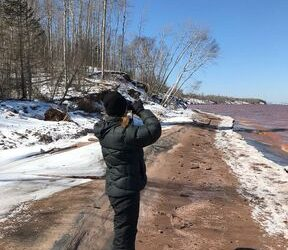 Lake Superior Shoreline Project Protects Critical Habitat