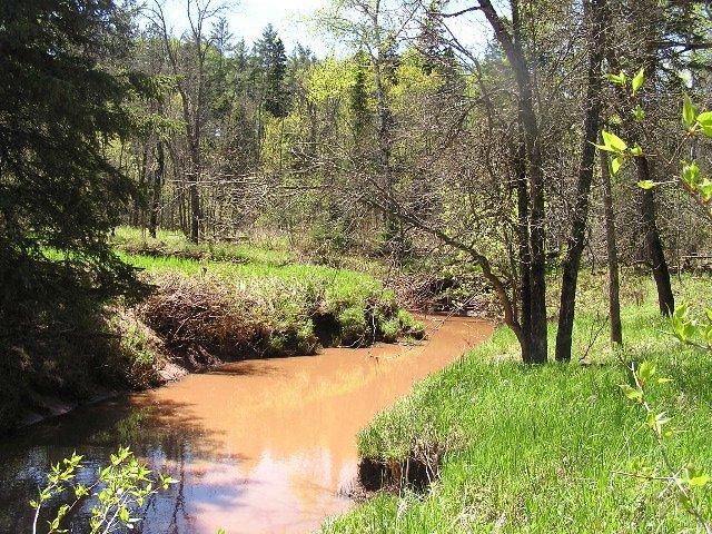 Bluff Creek Nature Preserve