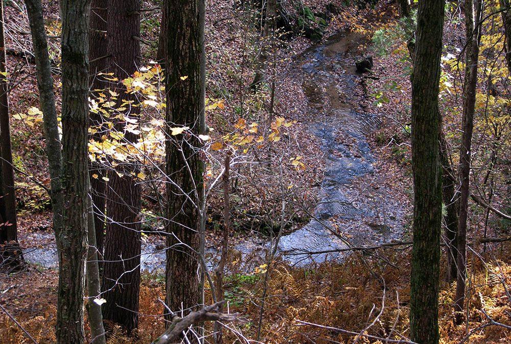 Keil Birch Creek Nature Preserve SNA