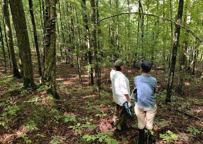 Tyler Forks Community Forest