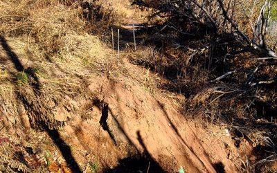 Brownstone Trail Update