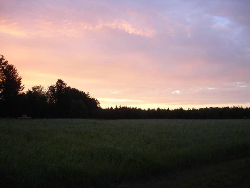 Morning at Henke Acres
