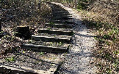 Brownstone Trail Updates: Summer 2021