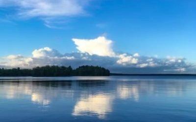 Grindstone Lake Cranberry Bog