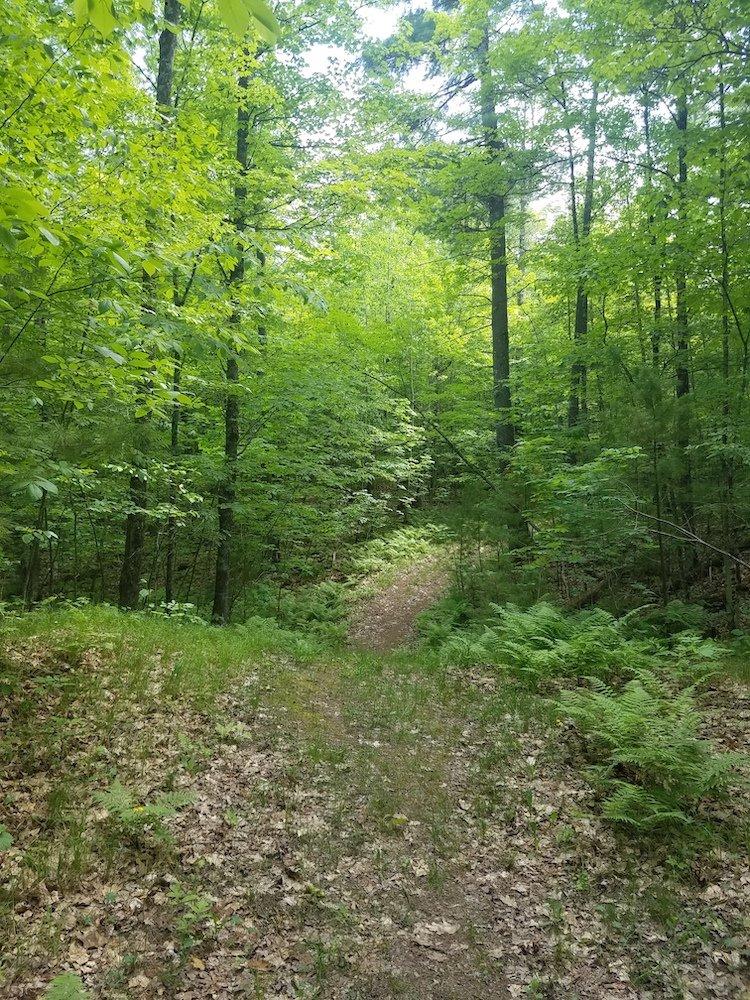 Telemark Preserve Trail
